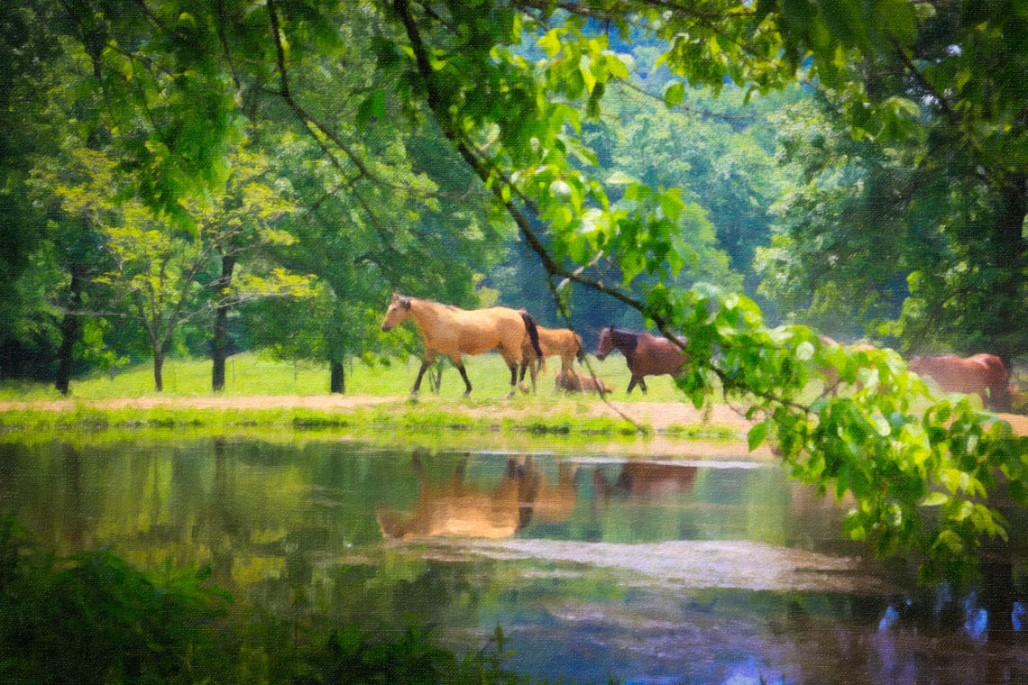 Terri-Aigner_Nature-Horses-Grazing-by-Pond-5oil-50-of-1