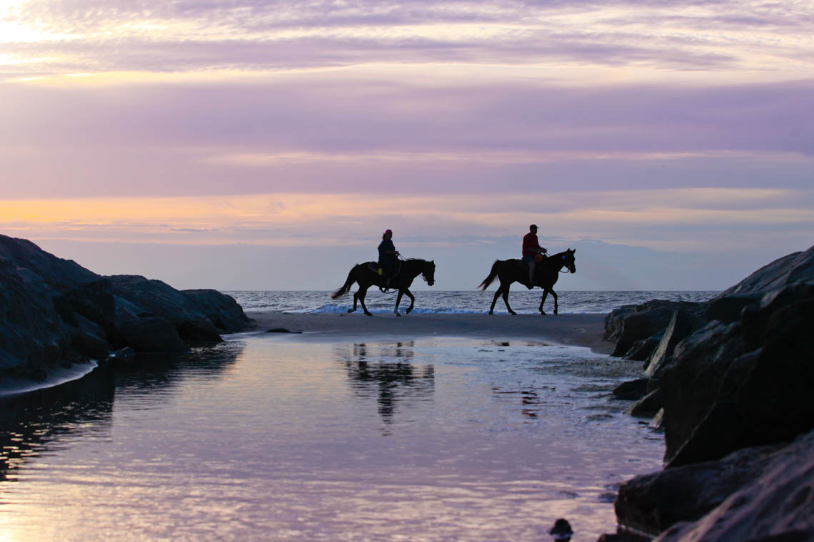 Terri-Aigner_Seascape-Riding-at-Dawn-50-of-1