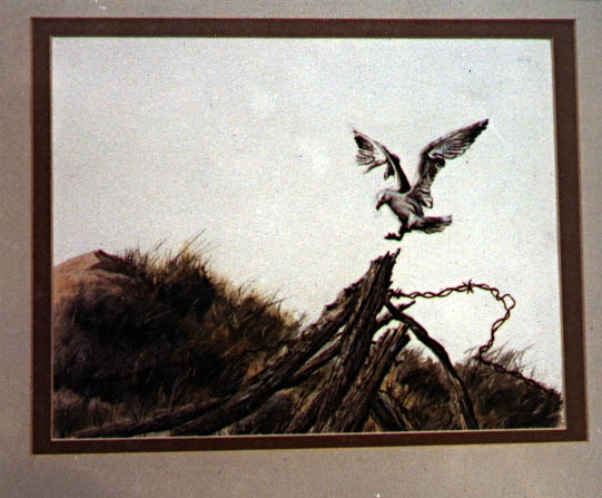 Watercolor: Gull on Dunes