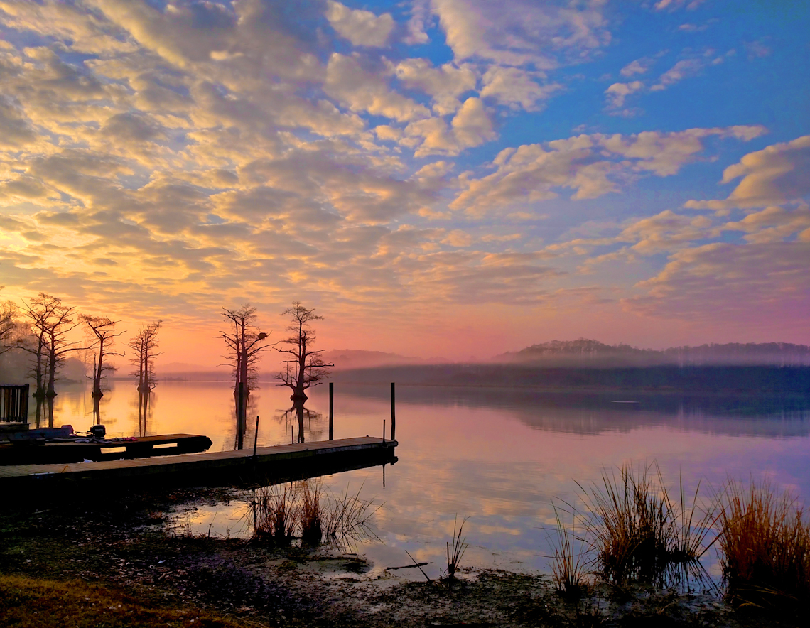 mist-on-the-chickahominy-by-terri-aigner