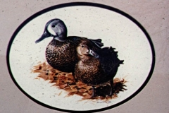 Watercolor: Pair of Blue-Winged Teal