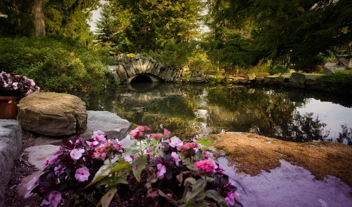 Terri-Aigner_Nature_Stone_Pond-and_flowers-50-of-1