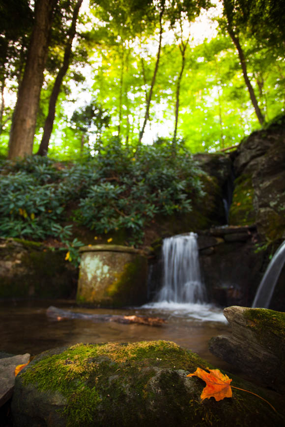 Terri-Aigner_Nature_Waterfall_and_Old_Stone_Spring-2-50-of-1