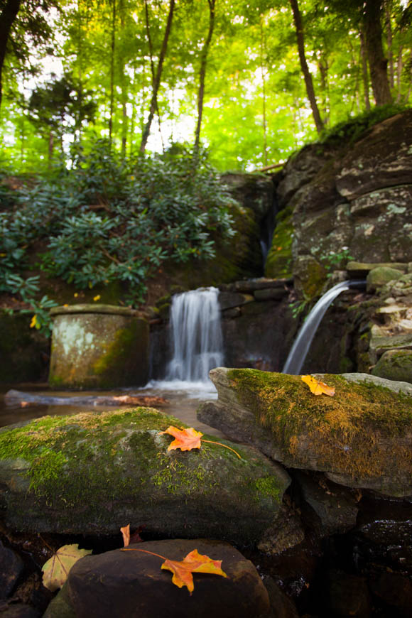 Terri-Aigner_Nature_Waterfall_and_Old_Stone_Spring-50-of-1