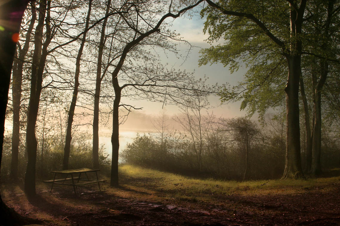 Terri-Aigner_Seascape-Chickahominy-Picnic-Table-Misty-Sunset-50-of-1-2