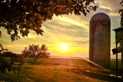 1_Terri-Aigner_Farm-Silos-in-Sunset-50-of-1