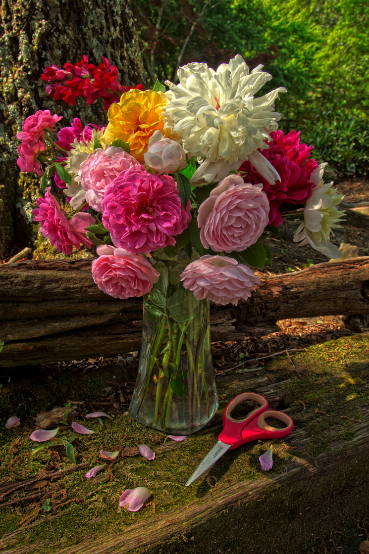 Mothers-Day-Rose-Bouquet