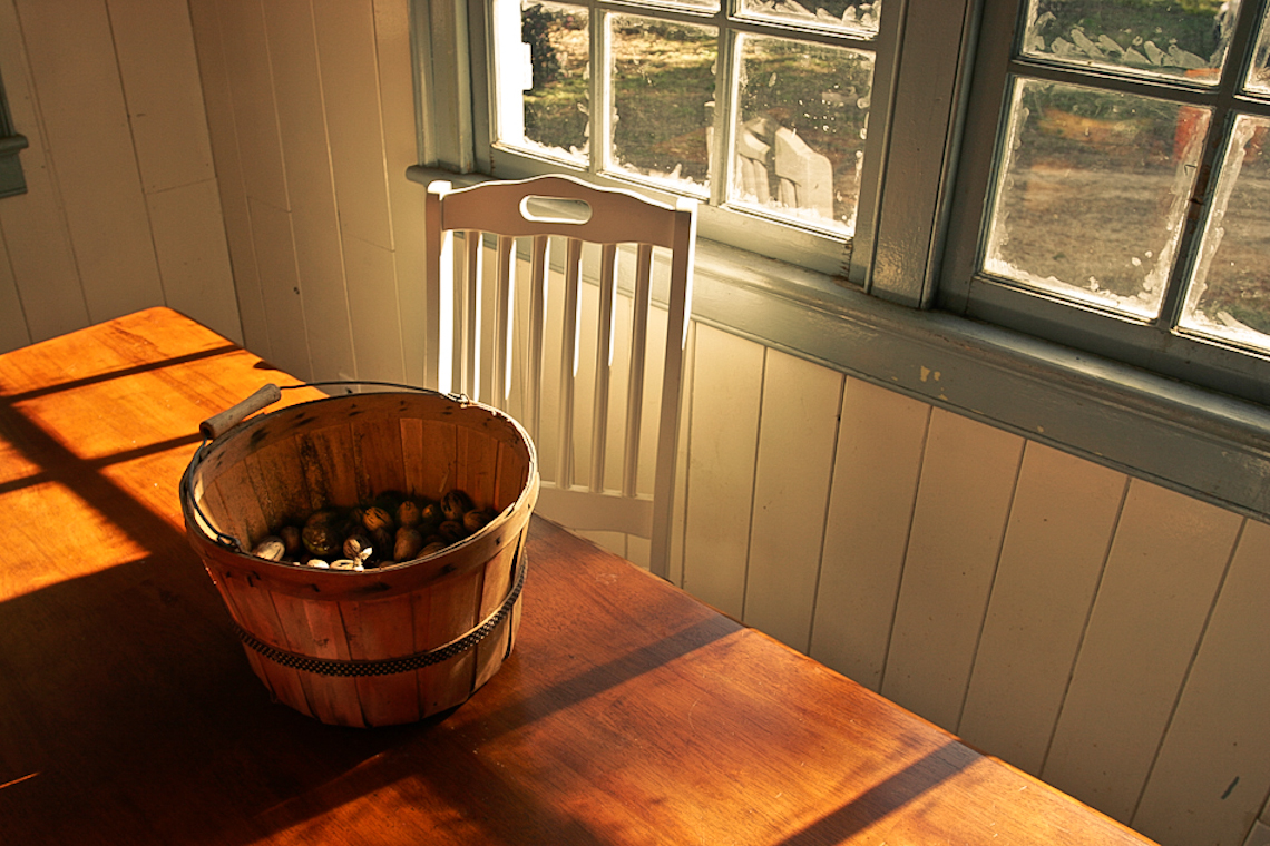pecan-basket-on-table-by-sunny-window-8807