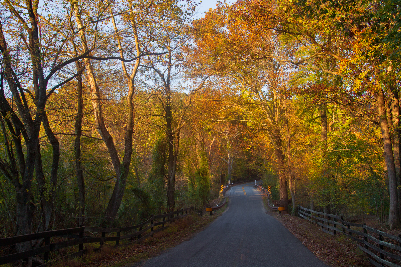 Autumn-country-backroad-2-50-of-1-4