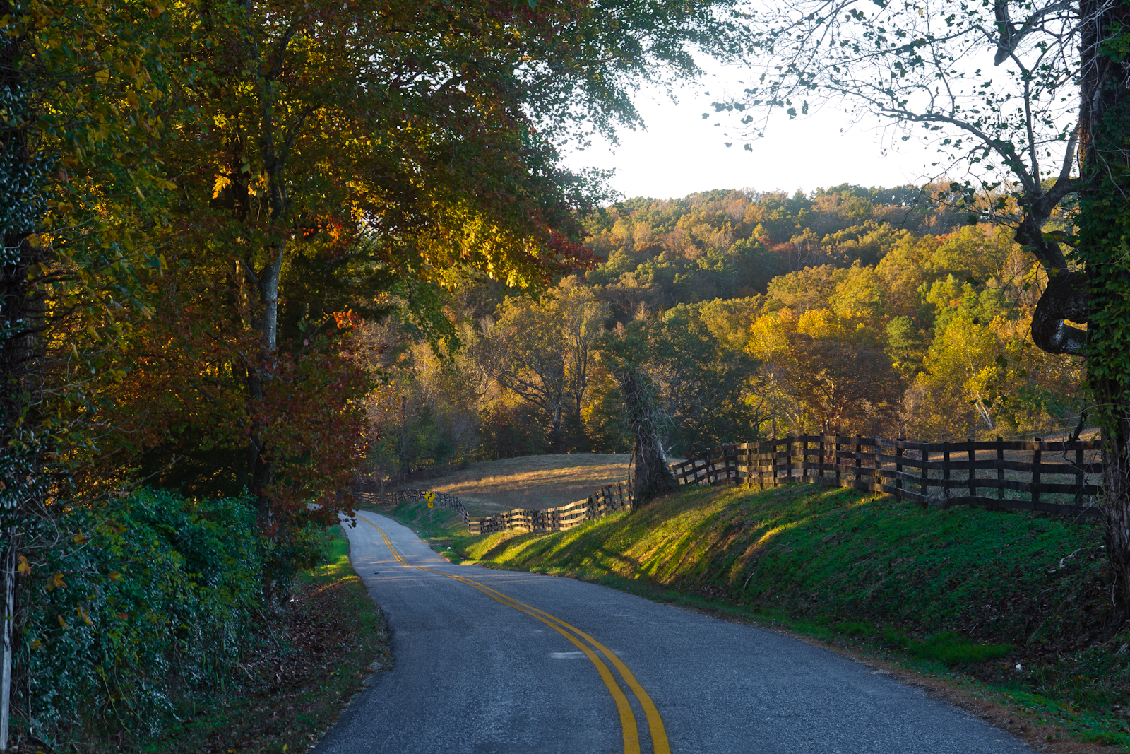 Autumn-country-backroad-2-50-of-1