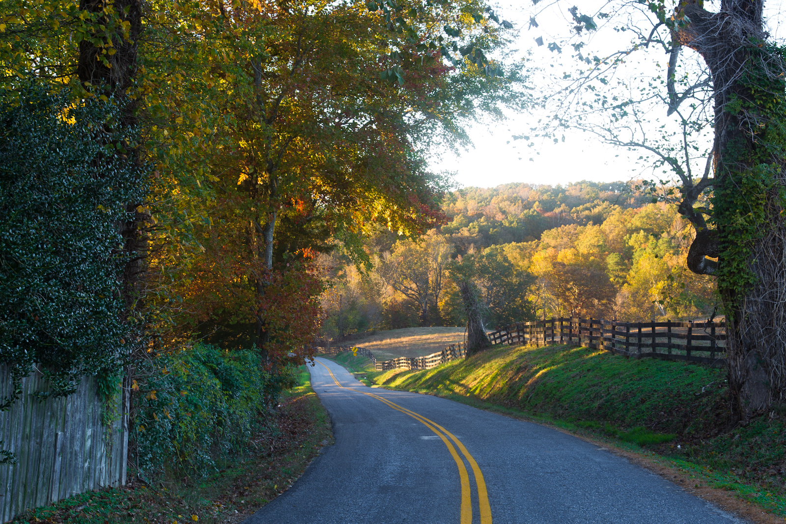 Autumn-country-backroad-50-of-1-2