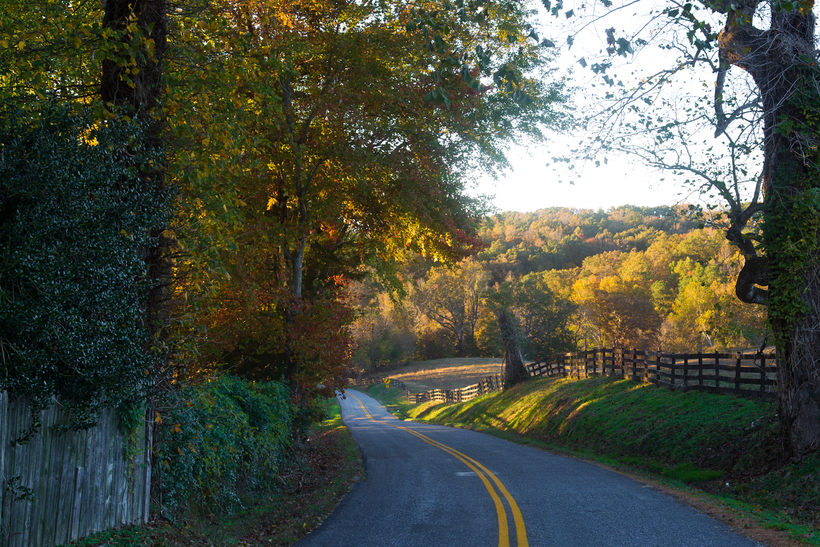 Autumn-country-backroad-50-of-1