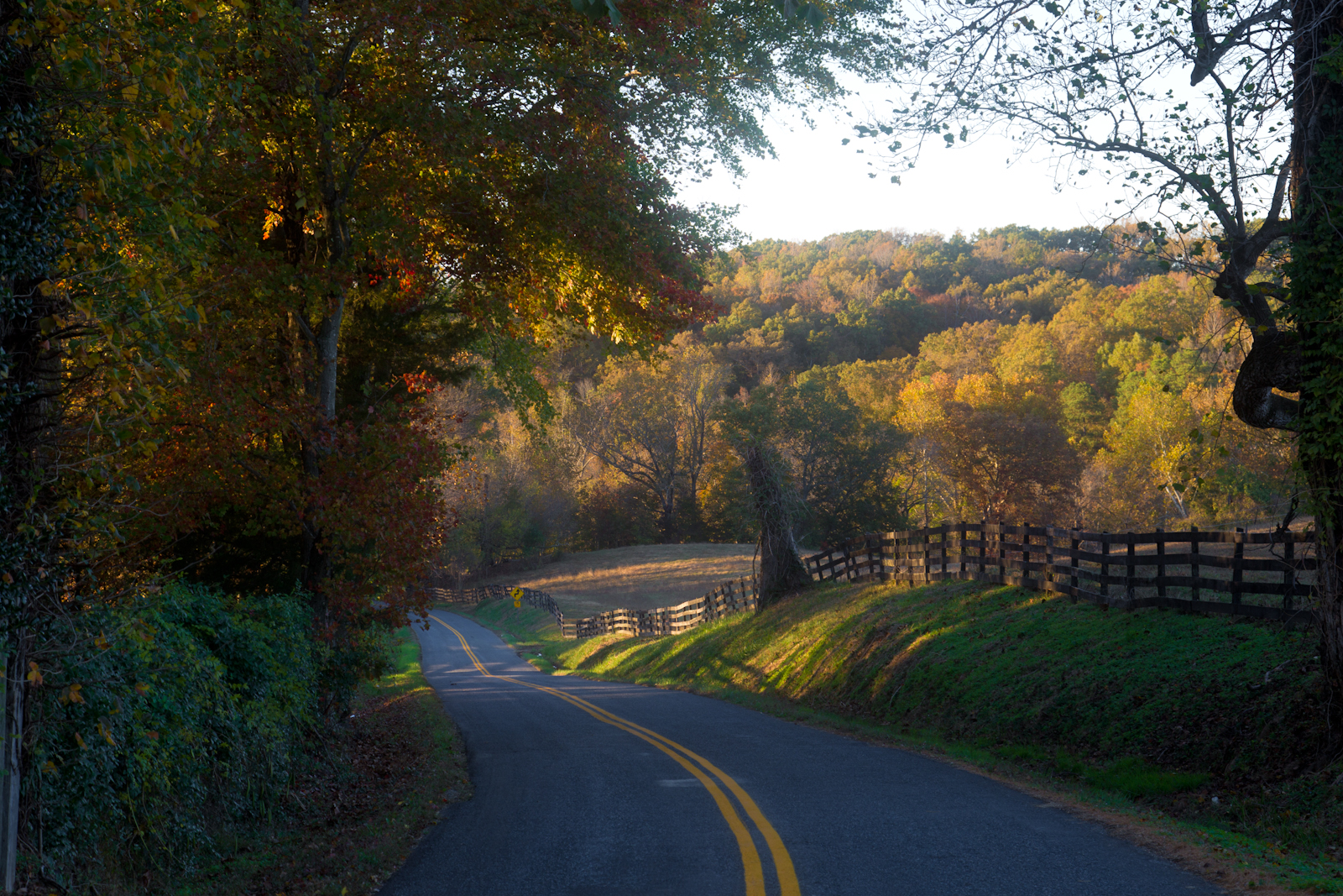 Autumn-country-road-50-of-1-3