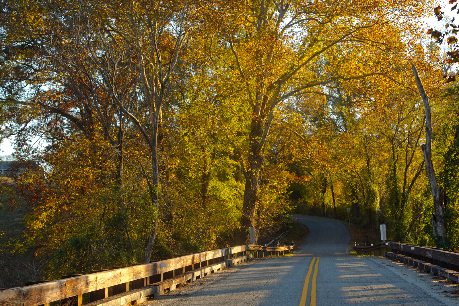 autumn-country-road-50-of-1-2