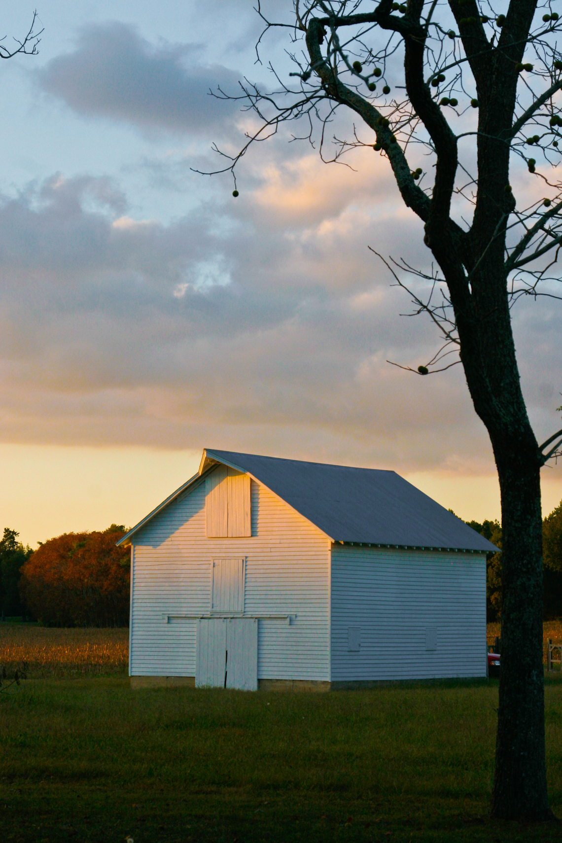 red-barn-silos-late-evening-dramatic-natural-light-0415