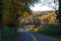 Autumn-country-road-50-of-1-4
