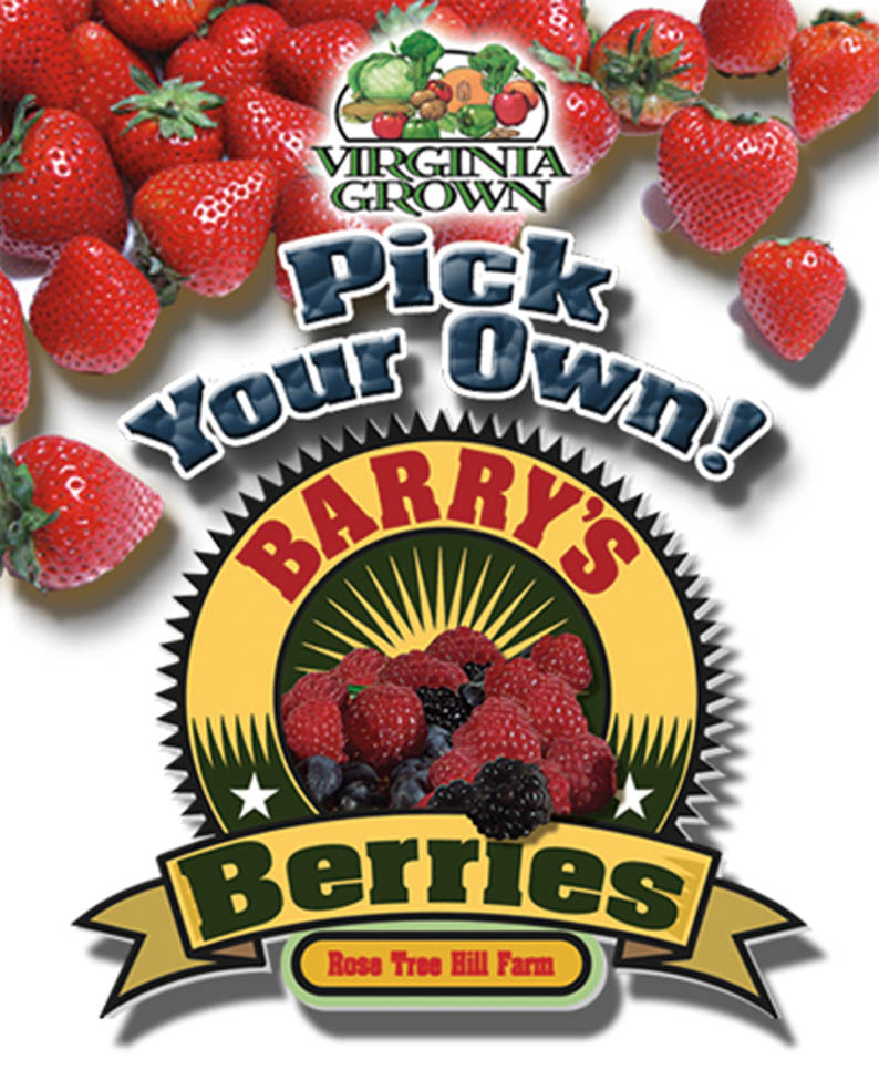 Barry's Berries Logo