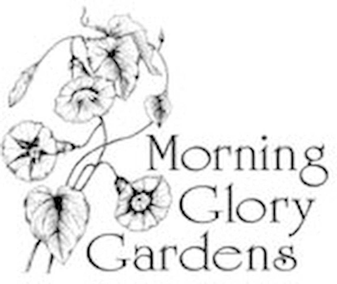 Morning_Glory_Gardens logo