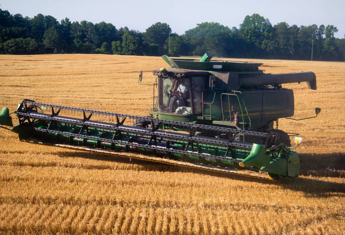 1_Famer-in-John-Deere-Combine-with-dog-in-cabVIP-GRAIN-FARMING-PICS-MONTAGUE-_MG_2081-156