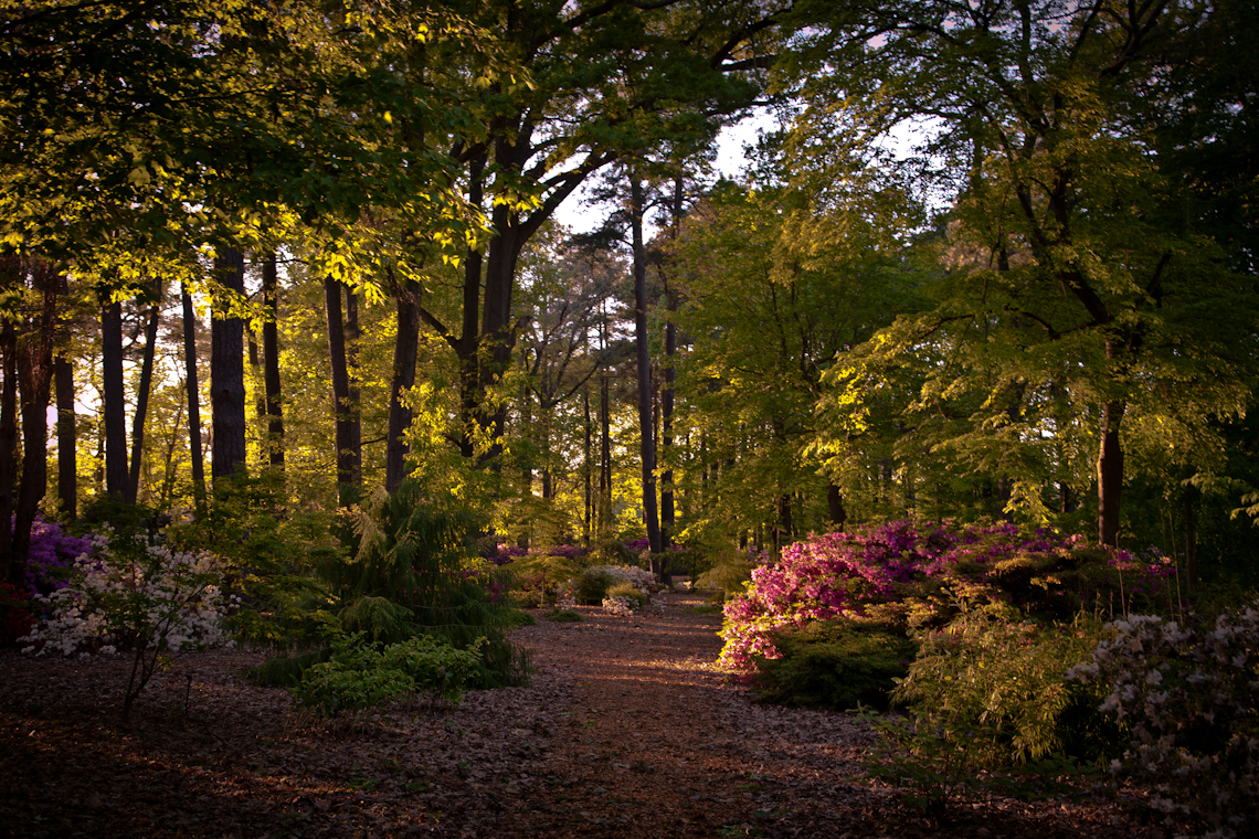 Norfolk-botanical-gardens-by-terri-aigner_MG_0474