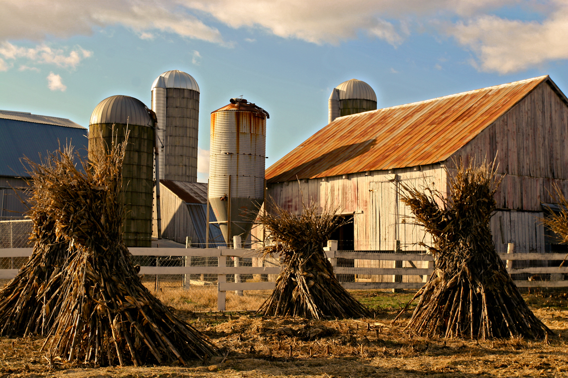 Southern-Maryland-Farm-with-Cornstacks-
