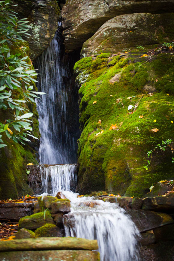 Terri-Aigner_Nature_Waterfall_and_Moss-s-50-of-1