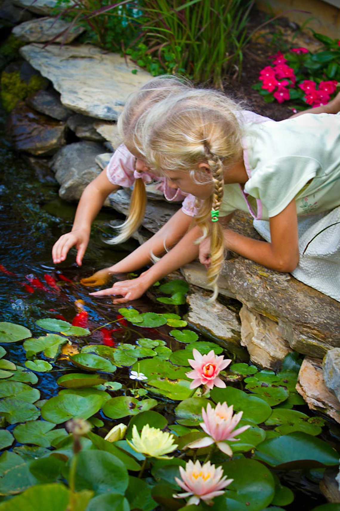 Two-young-blonde-girls-play-with-koi-in-garden-pond-
