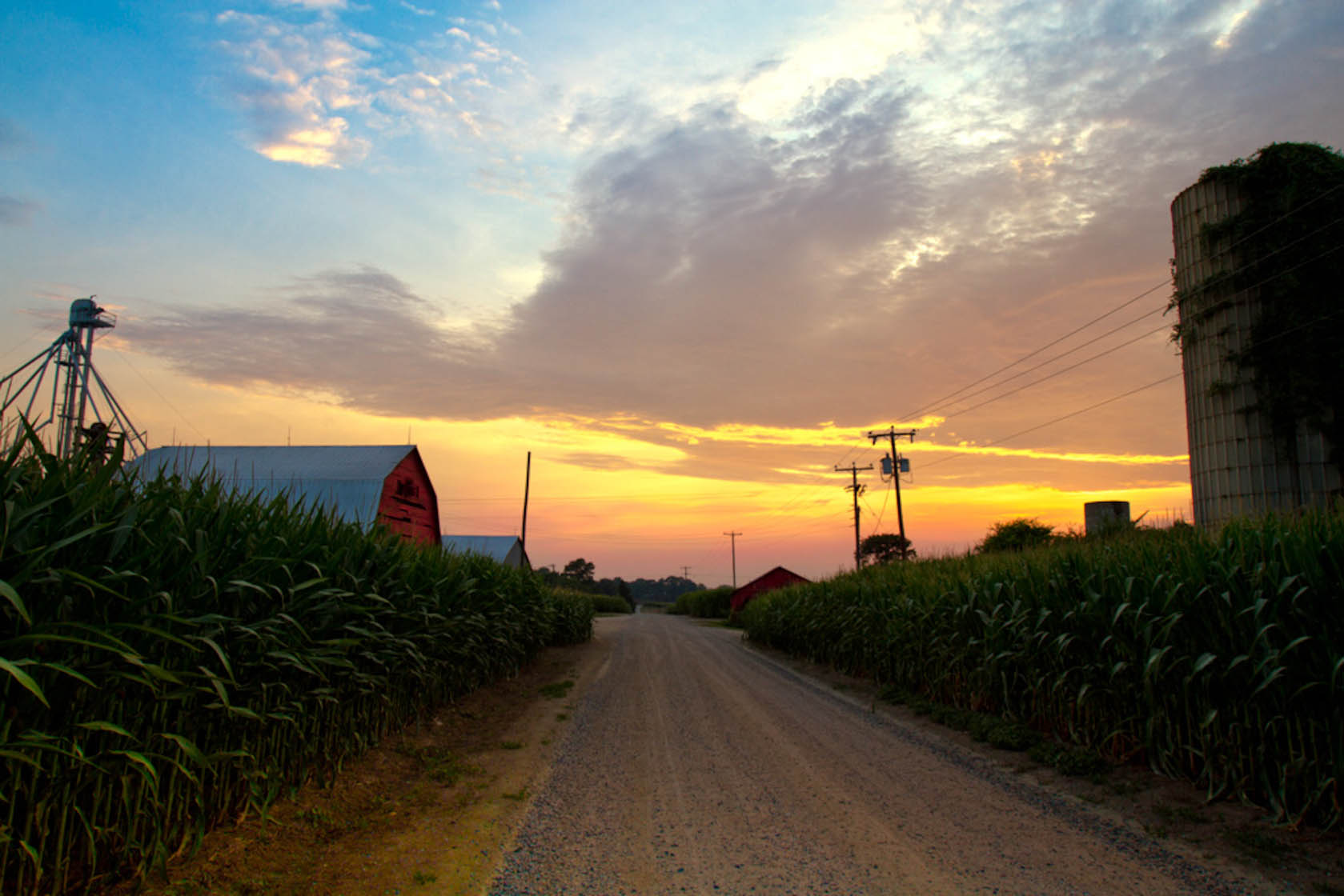farm-field-road-between-barn-silos-sunset-980-3