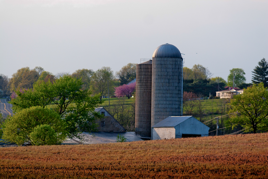 red-barn-silos-late-evening-dramatic-natural-light-3194