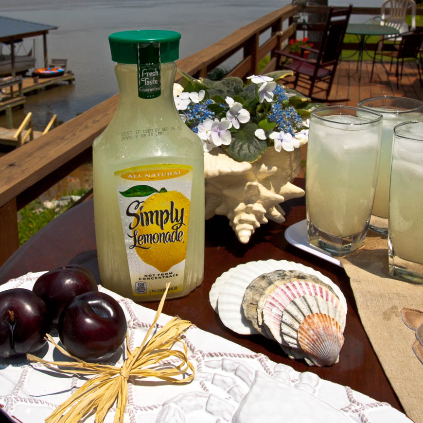 Simply-Lemonade-Coastal-3609