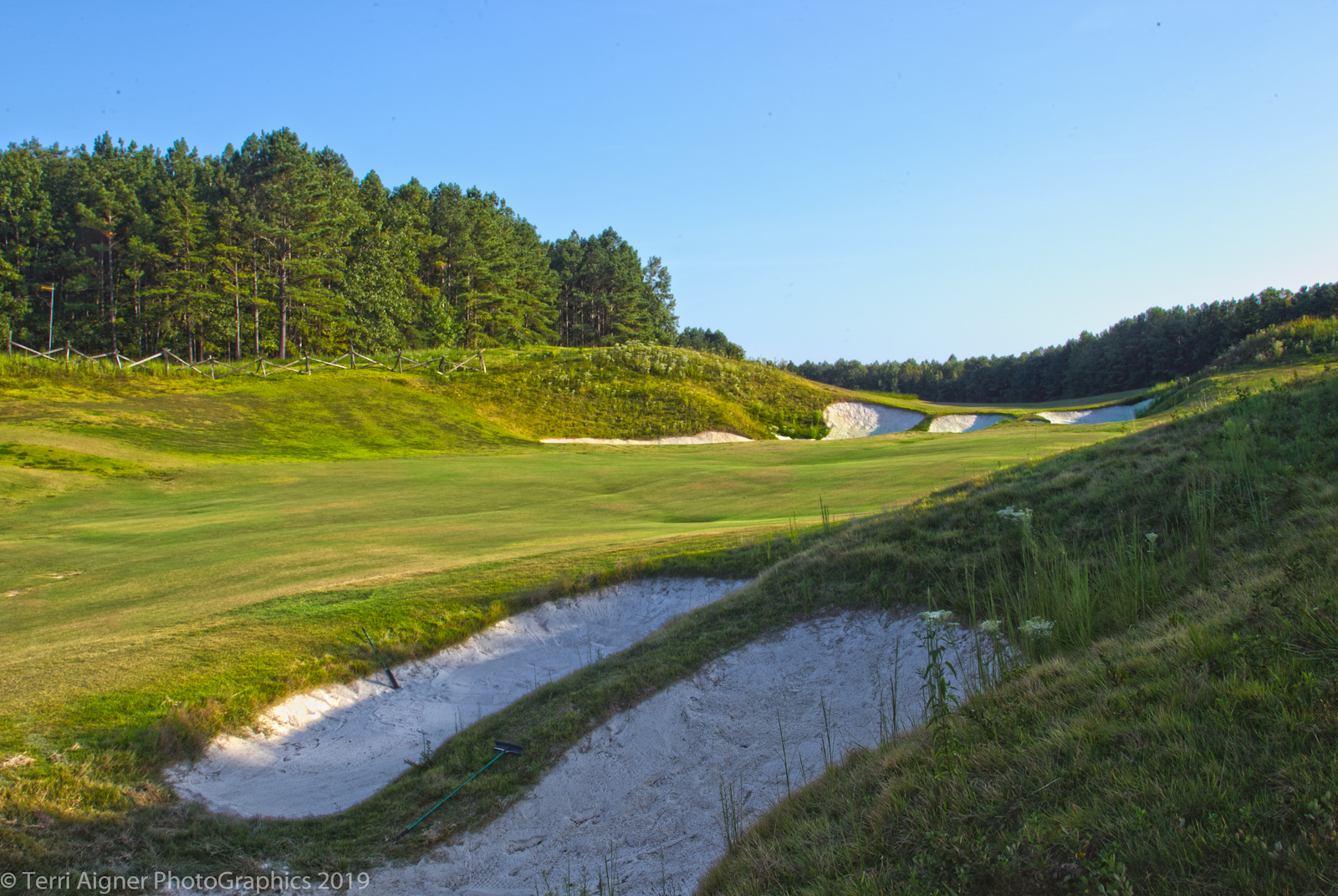 Royal_New_Kent_Gof_Club-Course_by_Terri_Aigner-1-of-74