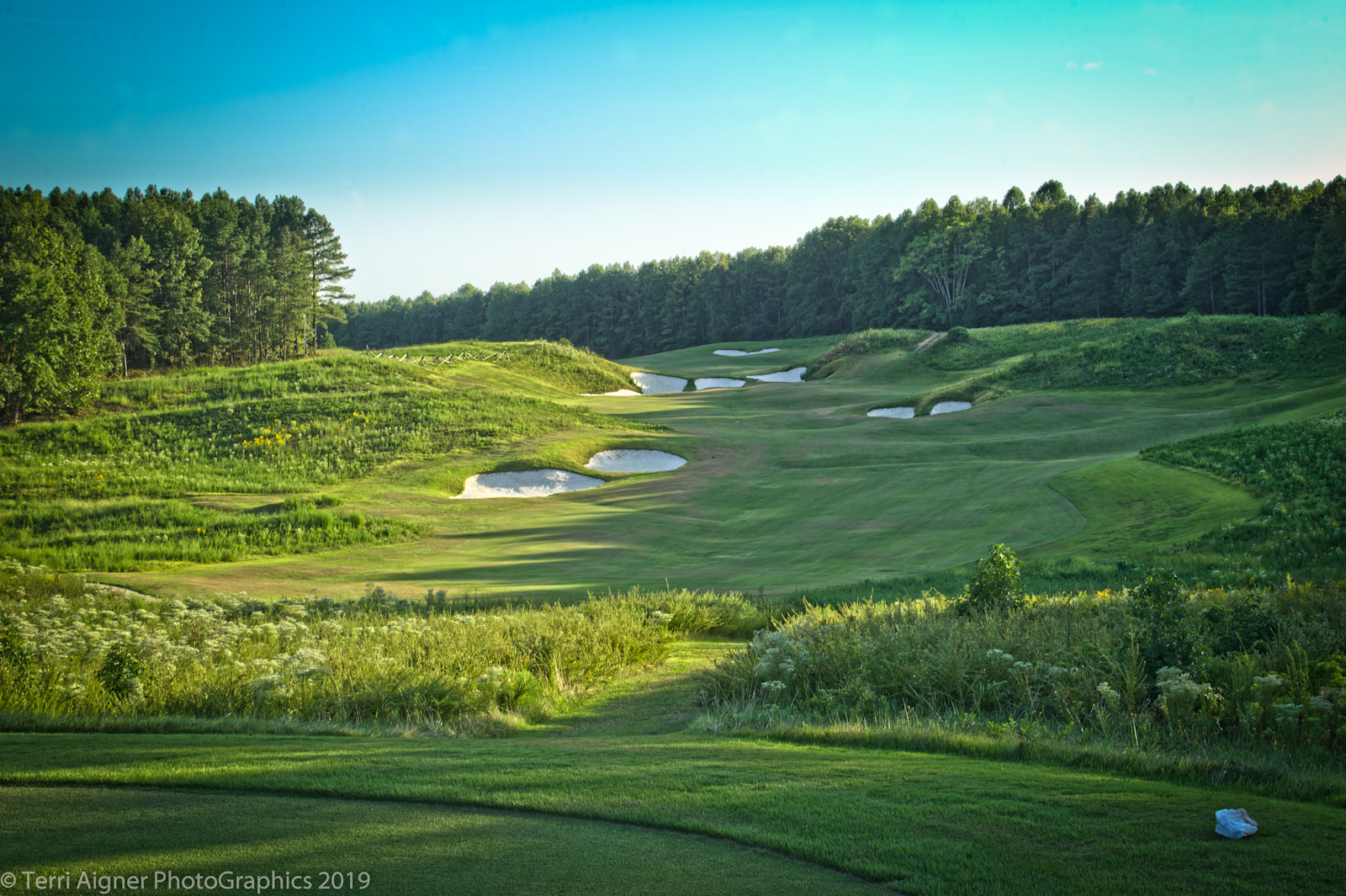 Royal_New_Kent_Gof_Club-Course_by_Terri_Aigner-10-of-74