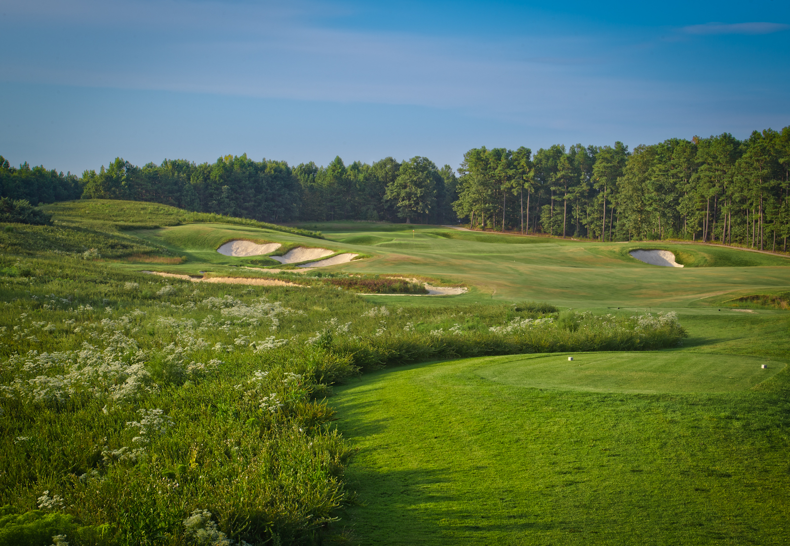 Royal_New_Kent_Gof_Club-Course_by_Terri_Aigner-14-of-74