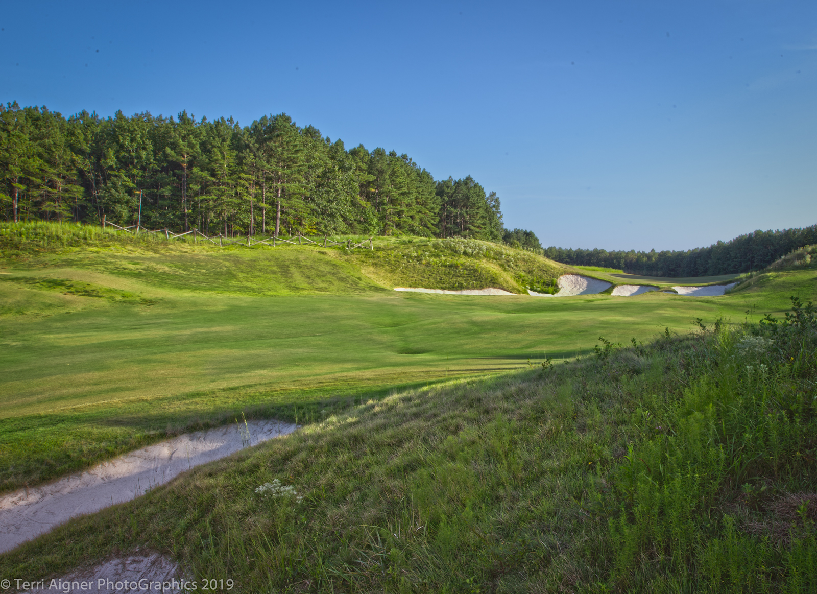 Royal_New_Kent_Gof_Club-Course_by_Terri_Aigner-2-of-74