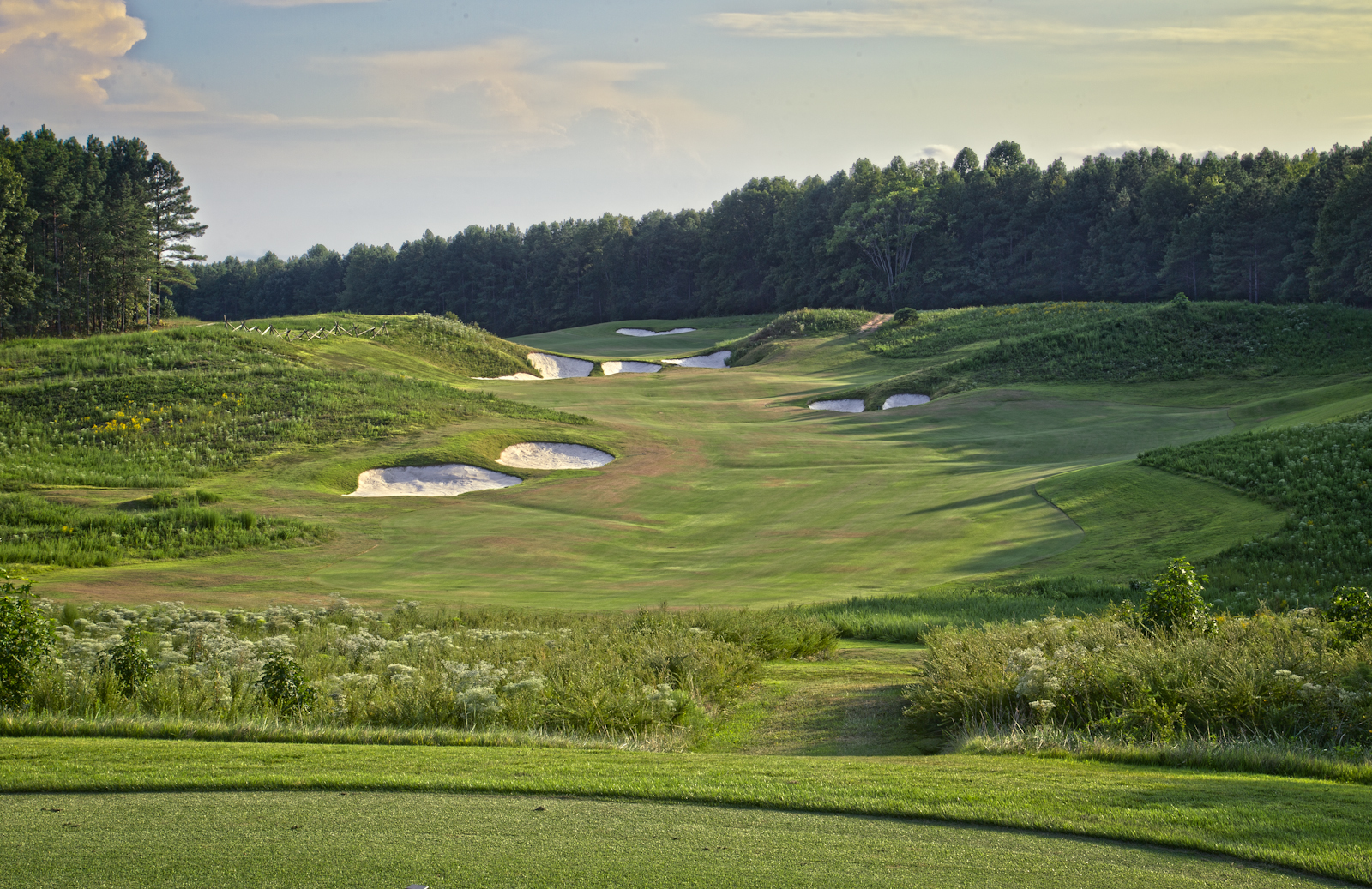 Royal_New_Kent_Gof_Club-Course_by_Terri_Aigner-33-of-74