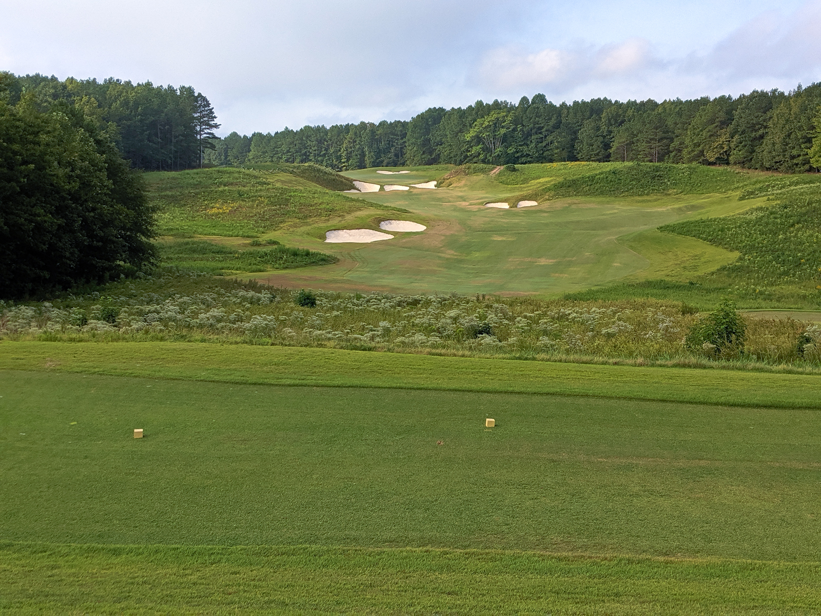 Royal_New_Kent_Gof_Club-Course_by_Terri_Aigner-48-of-74