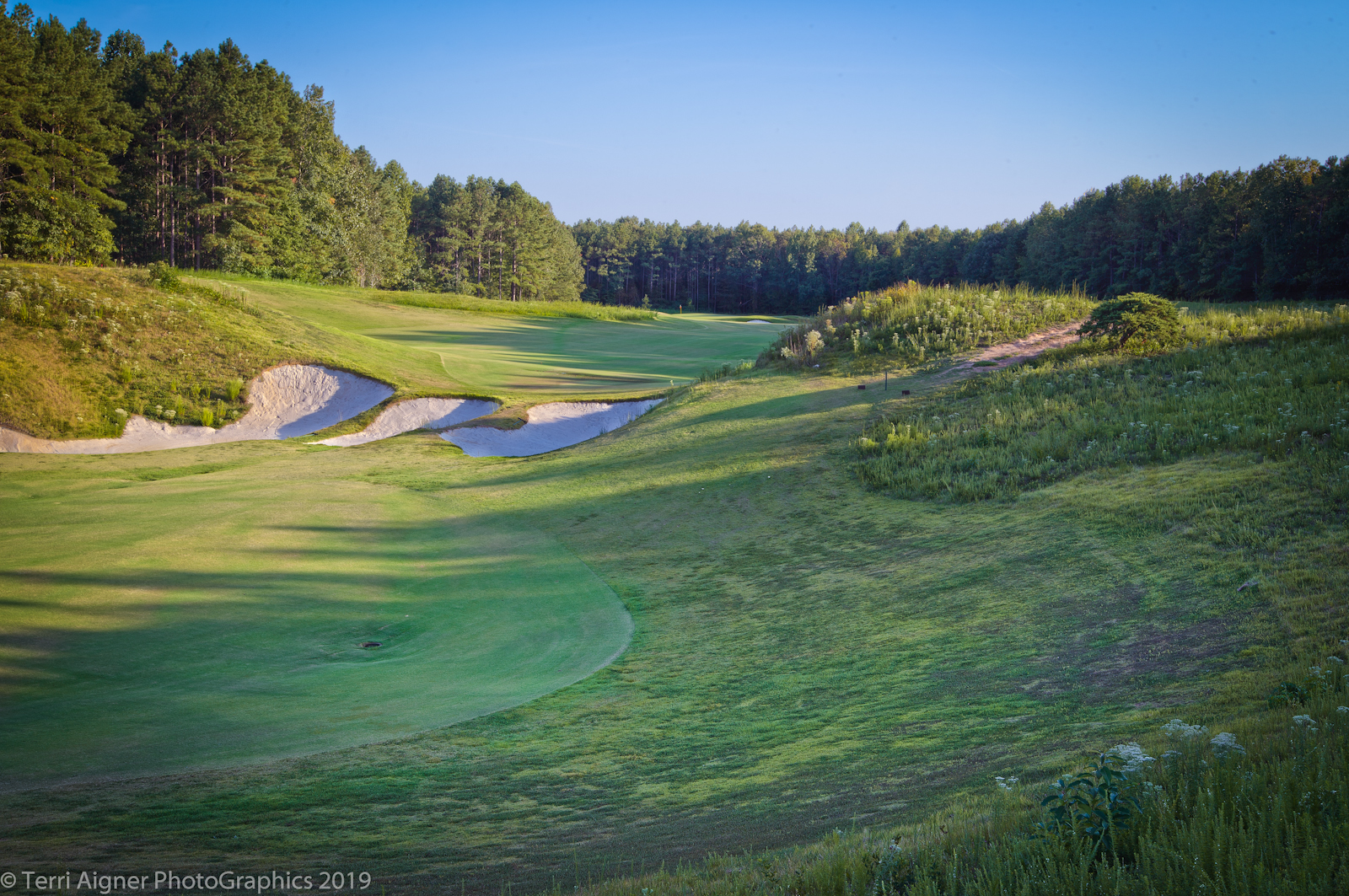 Royal_New_Kent_Gof_Club-Course_by_Terri_Aigner-5-of-74