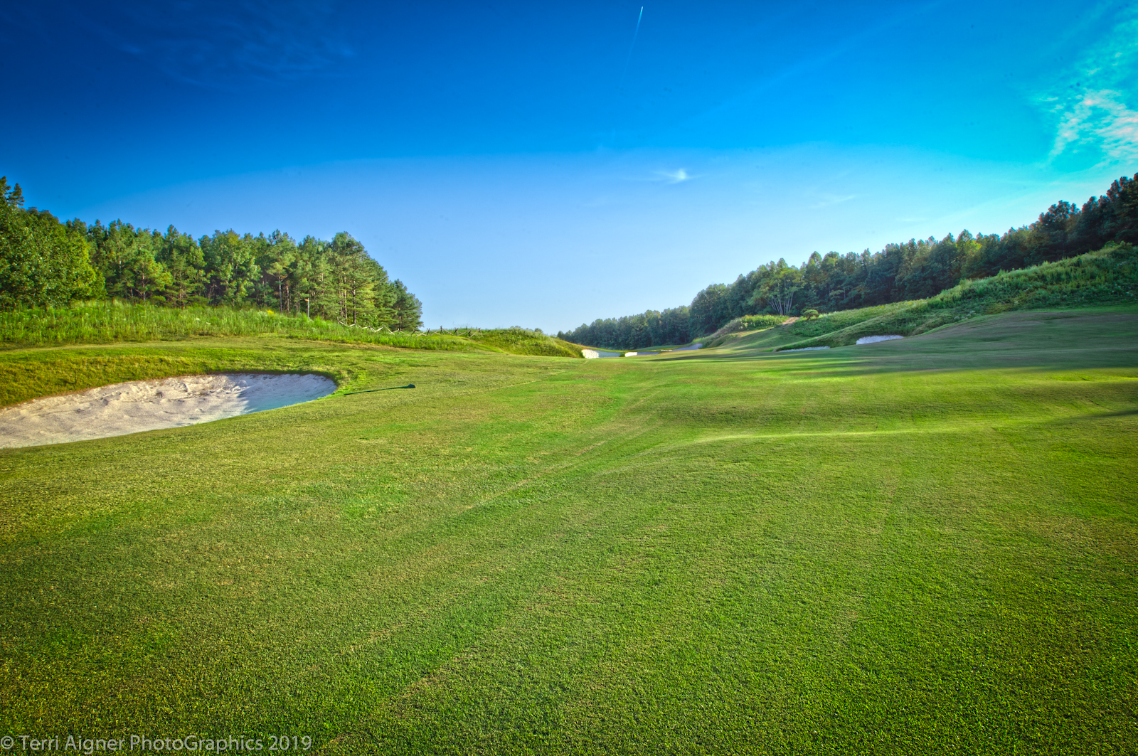 Royal_New_Kent_Gof_Club-Course_by_Terri_Aigner-6-of-74