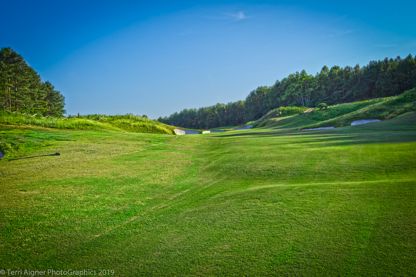 Royal_New_Kent_Gof_Club-Course_by_Terri_Aigner-7-of-74
