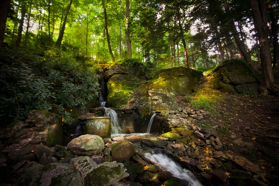 Terri-Aigner_Nature_Waterfall_and_Filtered_Light-2-50-of-1