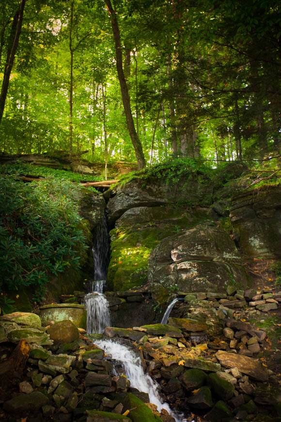 Terri-Aigner_Nature_Waterfall_and_Filtered_Light-50-of-1