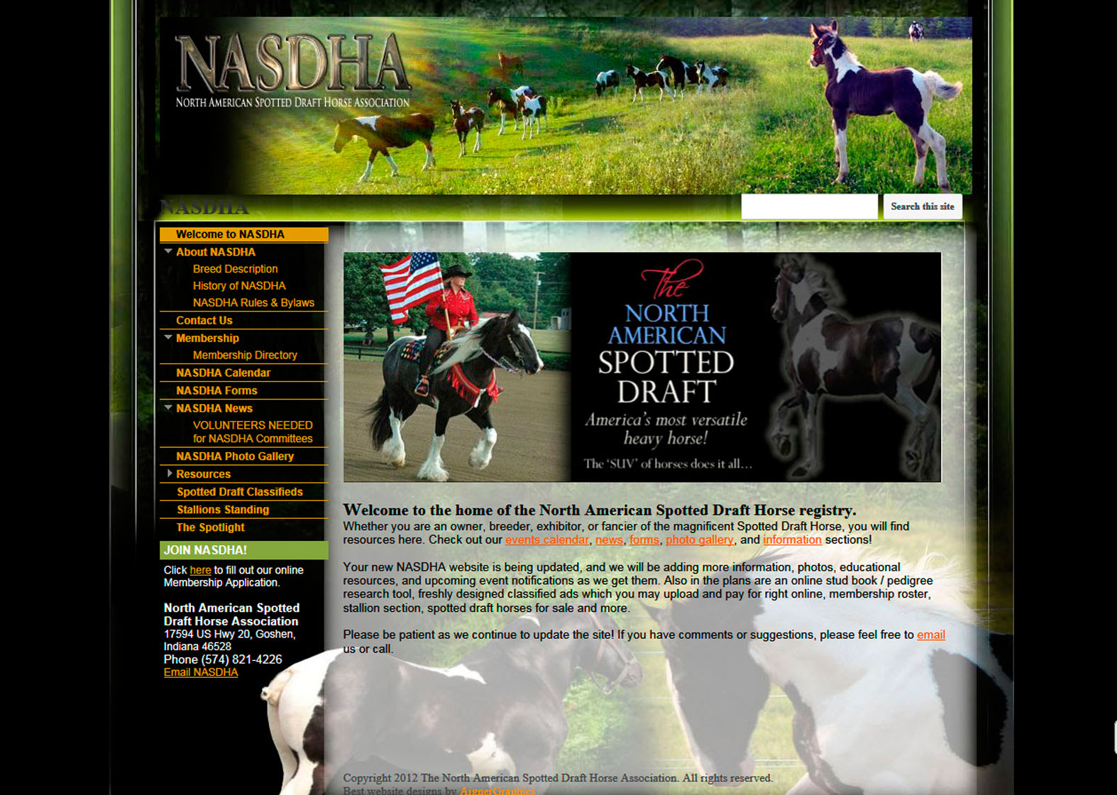 1_nasdha-website-by-aignergraphics